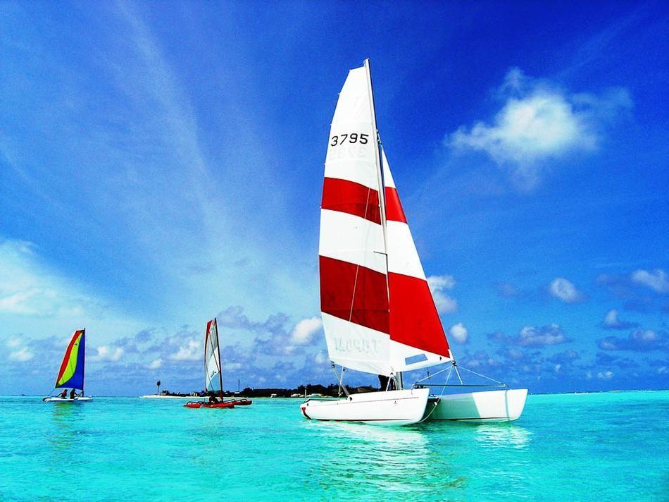 Catamaran-Sailing.jpg