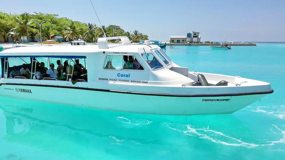speadboat-male.jpg