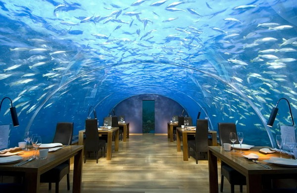 5 cafes in Maldives with the best vibe and menu