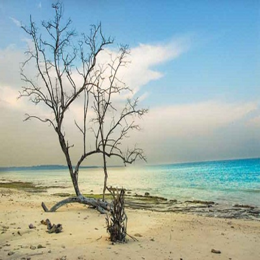 Jet Ski, Fun Tube and Sailing Activity in Maldives